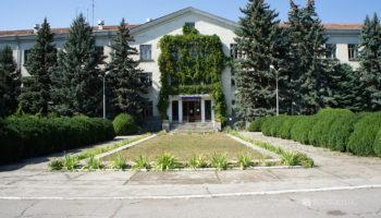 Здание, виноград, кустарники